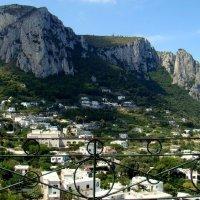 Capri - ilha de magotes