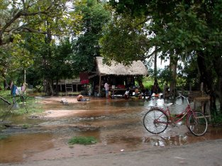25c6c-thai10331